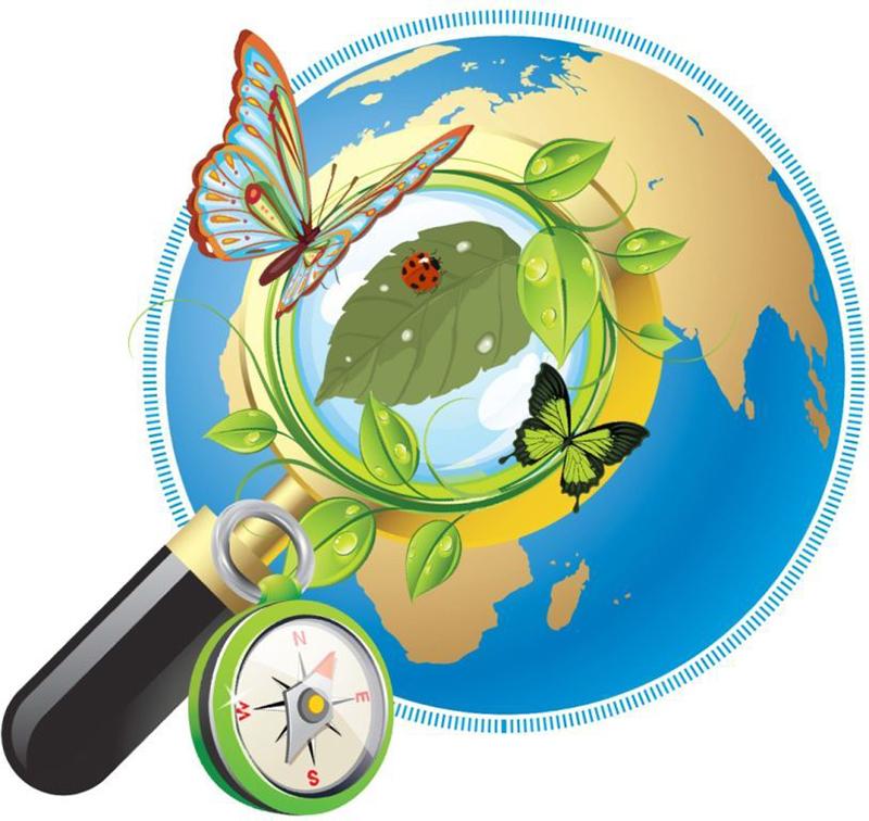 Картинки по запросу экологическое воспитание